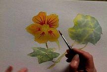 Watercolor technique / by Marie-Ange Le Flèche