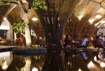 bamboo & wood