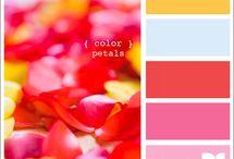 Paletas de color / by Todo Bonito