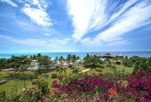 DIAMONDS LA GEMMA DELL'EST - TANZANIA / Situato sulla costa Nord-Ovest della magica isola di Zanzibar, questo incantevole e lussuoso Resort è stato progettato e costruito, nel completo rispetto dell'ambiente circostante. E' famoso per la sua ampia e meravigliosa spiaggia affacciata sulle acque aperte dell'Oceano Indiano, che offrono un tramonto indimenticabile. Un insieme di giardini tropicali, colori e cascate rende l'atmosfera piacevolmente rilassante.