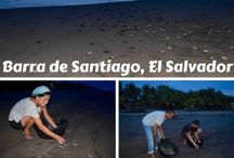El Salvador / Maximize your trip to El Salvador with these El Salvador travel tips and itineraries for independent travellers.