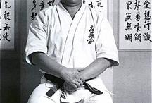 Karate / Grafiki Sztuk Walki