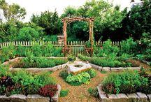 in the garden / by juliann bb