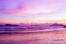 beach / by Erin Tullyjenkins