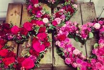Flowers-Plantitas