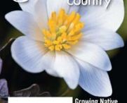Covers / Carolina Country's monthly magazine covers / by Carolina Country