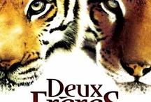 Films / Séries / Dessins Animés