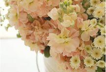 Sortes de fleurs