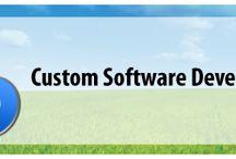 Efficiency of Custom Software Development in IT Field