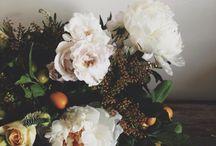 fleur / by Shannon Hill