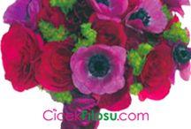 Çiçek Anlamları / Çiçeklerin hangi anlama geldiğinin anlatıldı
