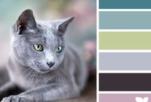 Home Decor { Color Palettes } / by Charmios