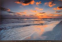 Sanibel and SWFL / by Lorraine Capps