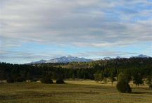 Lot 7 Bristlecone Drive, Pagosa Springs, CO 81147 / Listing Broker - Shelley Low Once in a lifetime opportunity to purchase this parcel located in the exclusive Timber Ridge equestrian subdivision. This Lot 7 has amazing eastern and northern ( Pagosa Peak) views. The only 35 acre parcels -Close to town, all paved roads and underground utilities, equestrian center and clubhouse, close to grocery store, hospital etc.
