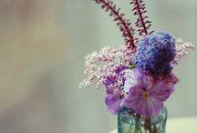 Flower - vintange