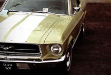 Mustang / Stangit