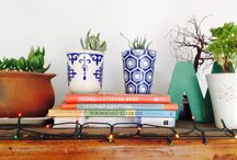 Jardin de mi Abuela / Plantería, especializada en suculentas en pocillos y vasijas de colores.