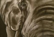 Charcoal pencil drawings