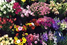 Step Inside Our Cooler / Random pictures of flowers and arrangements in our walk-in cooler.