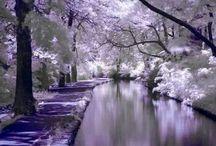 Beauty places
