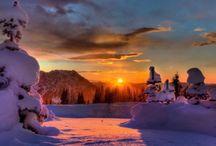 Winter theme inspiration / Winter freshnes