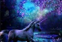 Pegasus & Unicorns