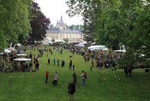 Les Jardins des plantes d'automne à Chantilly / Les photos de Georges Lévêque