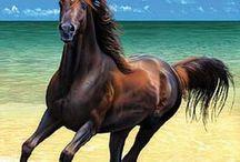 Deniz ve at