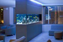 Aquario Marinho Decoração