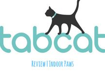 Product Reviews / Indoor Paws reviews the products designed to benefit your indoor cats