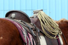 Western Saddles Fit