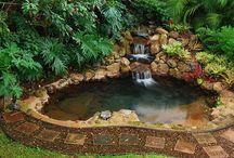 back yard waterfalls / by Anna Wells