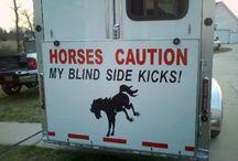 Horse trailer decals