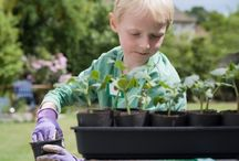 Hands On STEM Activities / Hands on learning, project-based, and problem-based learning can create a deeper engagement for students of all ages. Find some great examples here.
