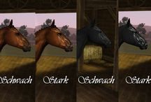 Sims 3 horse: Shine Markings