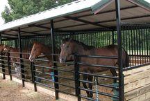 horse shelter/stalls