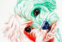 Ilustrações Magnificas / Imagens lindas animais,pessoas,comidas...