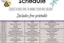 Schedule Ideas
