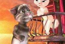 Gato e gata