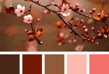 Colores para pintar al óleo (flores de manzano)