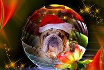Kerst eigen creatie's