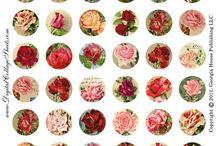 Винтажный цветочный рисунок