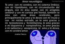 Neuro / Neuro