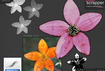 Digital Scrapbook Freebies CU / Commercial Use Products.  Credit to Tonje Gram is required