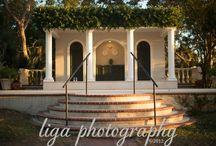 Bay preserve at Osprey December Wedding Sarasota
