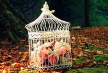 Декоративные клетки / В нашем предыдущем посте о спальнях в стиле кантри мы говорили о том, что в качестве декора можно использовать клетки для птиц.