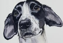 Dog Portraits / Examples of dog portraits which I have painted in watercolour and ink or in acrylic on canvas.  Available for commissions ! www.gingerhareart.co.uk