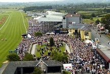 The Curragh / The famous Curragh Racecourse and the surrounding sites!! / by The Keadeen Hotel