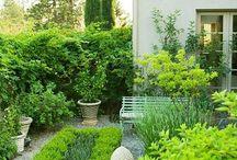 Small / Courtyard Gardens