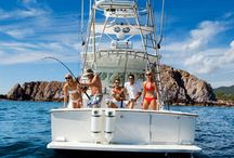 Fishing in Los Cabos / Best fishing on the world is in Los Cabos